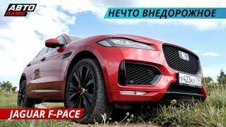 Обновление Jaguar F-PACE 2019