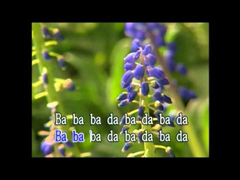 National Express (Karaoke) - Style of The Divine Comedy