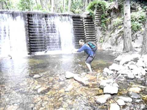 BROWN TROUT FISHING IN THE SAN GABRIEL MOUNTAINS