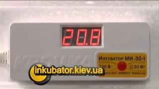 Электронный Цифровой Инкубатор Квочка МИ-30-1 на 70 яиц