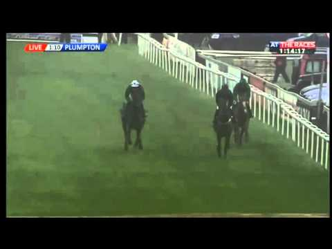 L'Ami Serge - At The Races App On iPhone Novices' Chase (Class 3) - 2016