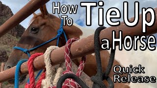 How to Tie Up Your Horse -Quick Release Knot / Halter Hitch- BTSR