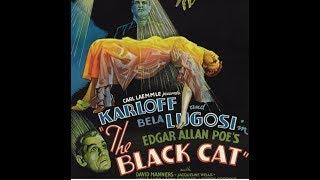 Sleazoid's Episode #41: THE BLACK CAT (1934) + WIDOW BLUE! (1970) Ft. Will Sloan