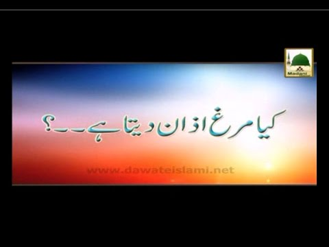 Kia Murga Azan Deta Hai - Madani Muzakra - Maulana Ilyas Qadri