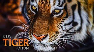 New Tiger Dhun🦁🦁 || dj dhumal mix