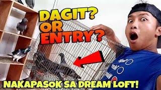 MAY NAKAPASOK NA 2 KALAPATI SA DREAM LOFT MGA NAGATUKAY! ( DAGIT? OR ENTRY'S? )