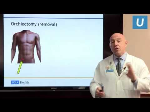 Testicular Cancer: Facts And Fictions - Dr. Mark Litwin | UCLA Urology