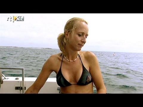 Opgegeten door witte haai in Australi  RTL TRAVEL  YouTube
