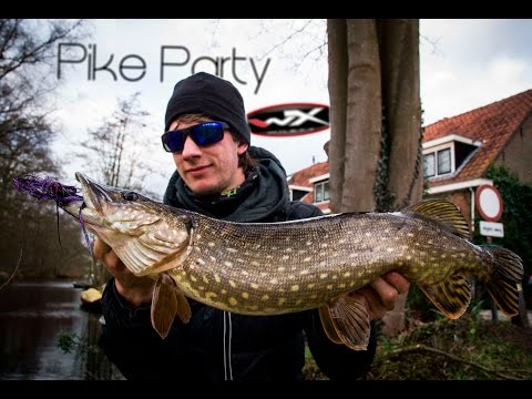 Polder Pike Party - Pike On The Fly