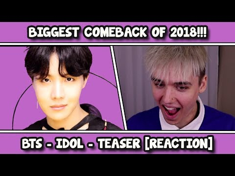BTS (방탄소년단) 'IDOL' Official Teaser REACTION [W I G]