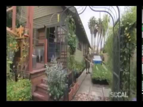 Огород 4 сотки в городе - 2700 кг еды в год