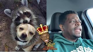 Shuler King - How Does A Dog And A Raccoon Fall In Love?!