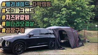 애견전용수영장이 있는 캠핑장에서 차박 캠핑 / 도그파크…