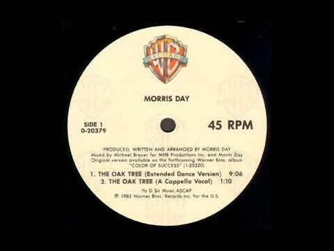 The Oak Tree (Extended Dance Version) - Morris Day
