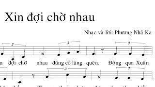 """MC VIỆT THẢO- MUSIC- Nhạc Phẩm """"XIN ĐỢI CHỜ NHAU"""" của Phương Nhã Ka- March 28, 2019."""