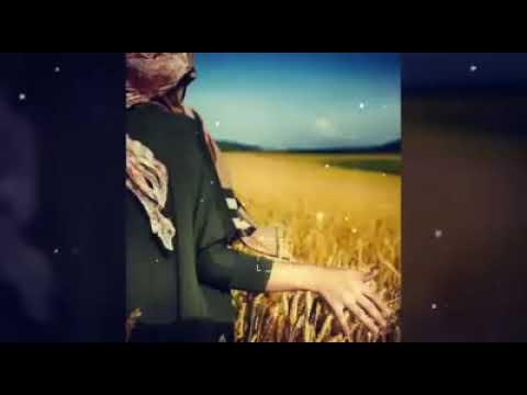 Dı nav şevek reş tarî- Harika kürtçe şarkı (şeveki)