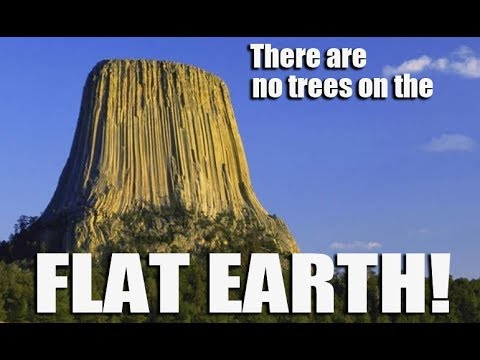 There Are No Forest on the Flat Earth thumbnail