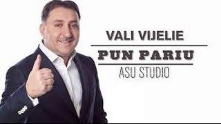 VALI VIJELIE  -  PUN PARIU