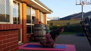 Day 2 Challenge online personal trainer - Warrior 11 Pose & Cat / Cow Pose