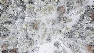 видео зимняя магия | путь по картам