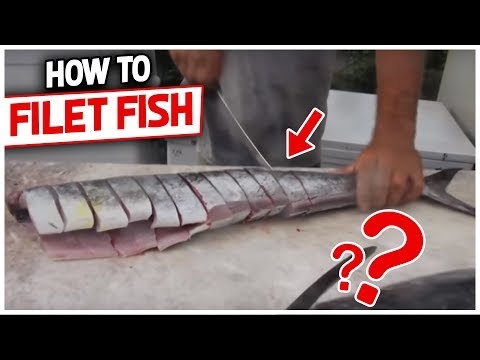 How To Filet & Steak A Kingfish