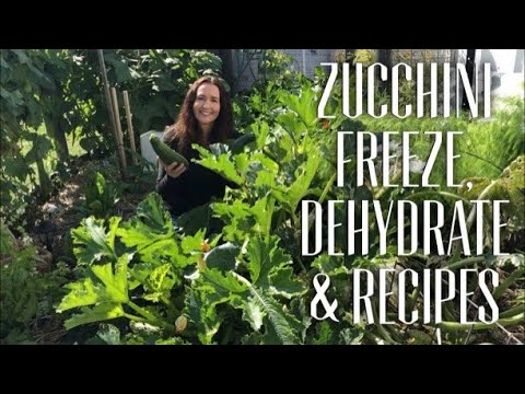 HOW TO MANAGE ZUCCHINI - GROW & PRESERVE TO EAT ALL YEAR