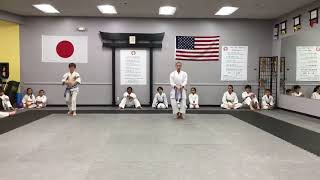 Practicing  katas