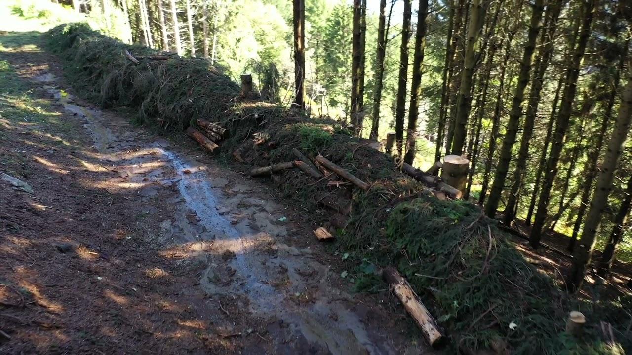 Terminato il taglio degli alberi per rimuovere la cabina della tragedia del Mottarone (live)