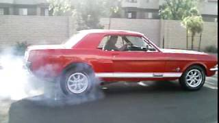 1965 Mustang Straight 6 Burnout