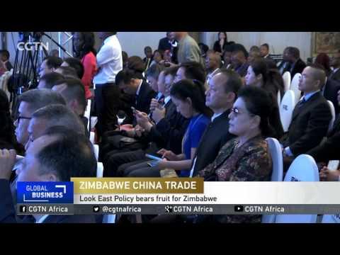 Look East Policy bears fruit for Zimbabwe