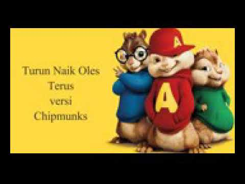 Chipmunks kau tinggal turun naik
