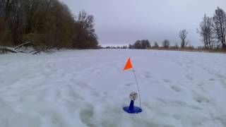 видео Зимняя рыбалка в Воронежской области