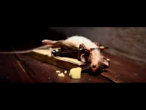 Mouse Trap - Cheese Advertisement