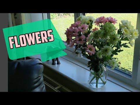 Bought my Mum some Flowers #stevesfamilyvlogs