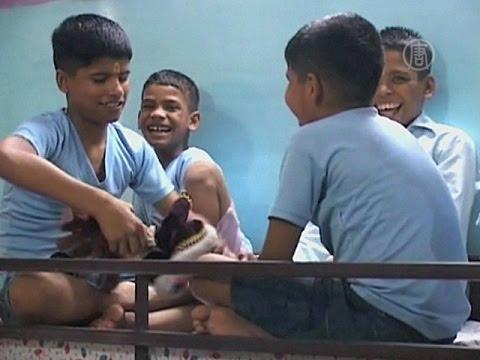 Бывший учитель в Индии приютил 12 детей с ВИЧ (новости)