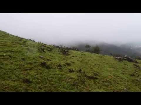 Mekanagadde Homestay - Rainy Season August 2014