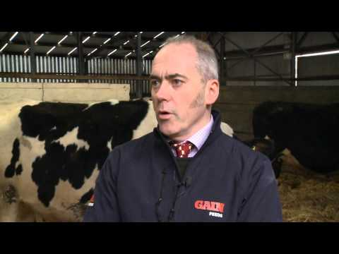 Glanbia Feeds for dairy cows in Ireland - driving milk production