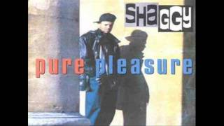 Shaggy - Give Thanks and Praise