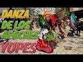 Video de San Luis Acatlan