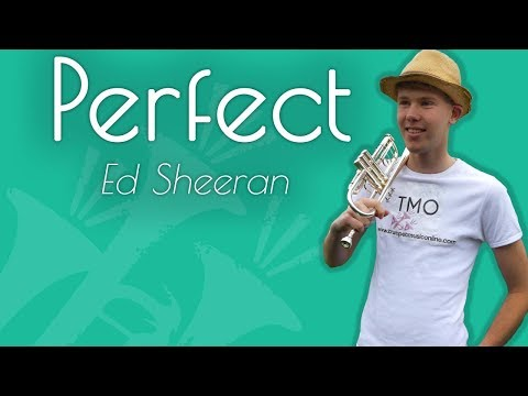 Ed Sheeran - Perfect (TMO Cover)