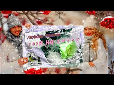 Любовь Попова     Роза на снегу