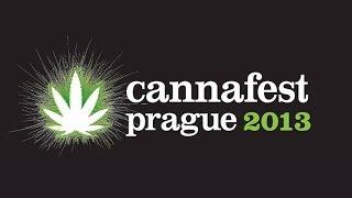 Drogový mír v akci | The Drug Peace in Action | D. Fine