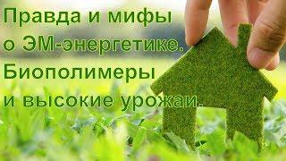 видео К ВОПРОСУ О БИОПОЛИМЕРАХ