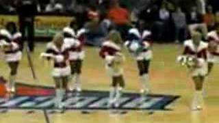 charlotte bobcats cheerleader lady cats x as