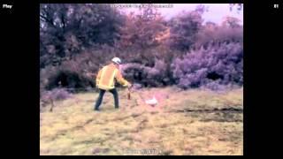 FireVu500 20metre N Heptane fire test
