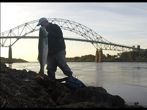 Cape cod canal striped bass fishing 44 x 41 lbs youtube for Cape cod canal fishing report