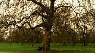 Repeat youtube video Oasis - Songbird (Official Video)