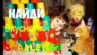 НАйДИ ВКУСняШки ПеРвЫм!!! ЧеЛЛенДЖ для КОТЯТ:))) Challenge for kittens!!!