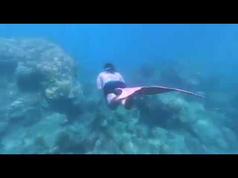 Mermaid Time !!