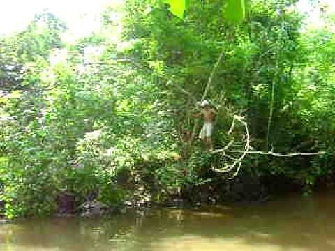 tarzan e macaca chita de cacaulandia Travel Video